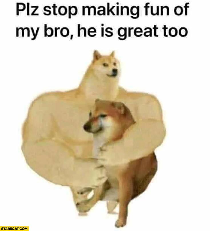 Please stop making fun of my bro he is great doge meme