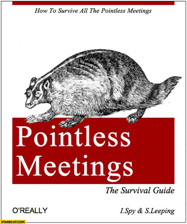Pointless meetings the survival guide oreilly book