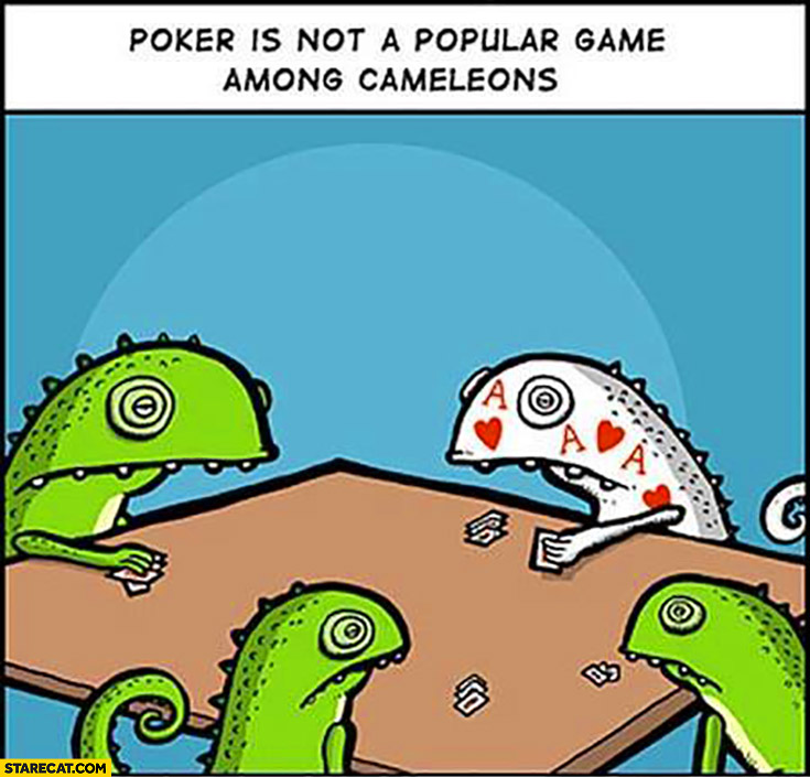 Poker is not a popular game among Chameleons. Looking like his top card silly drawing