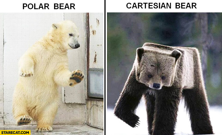 Polar bear, cartesian bear comparison