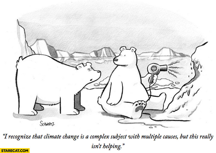Polar bear with hair dryer: I recognize that climate change is complex subject but this really isn't helping