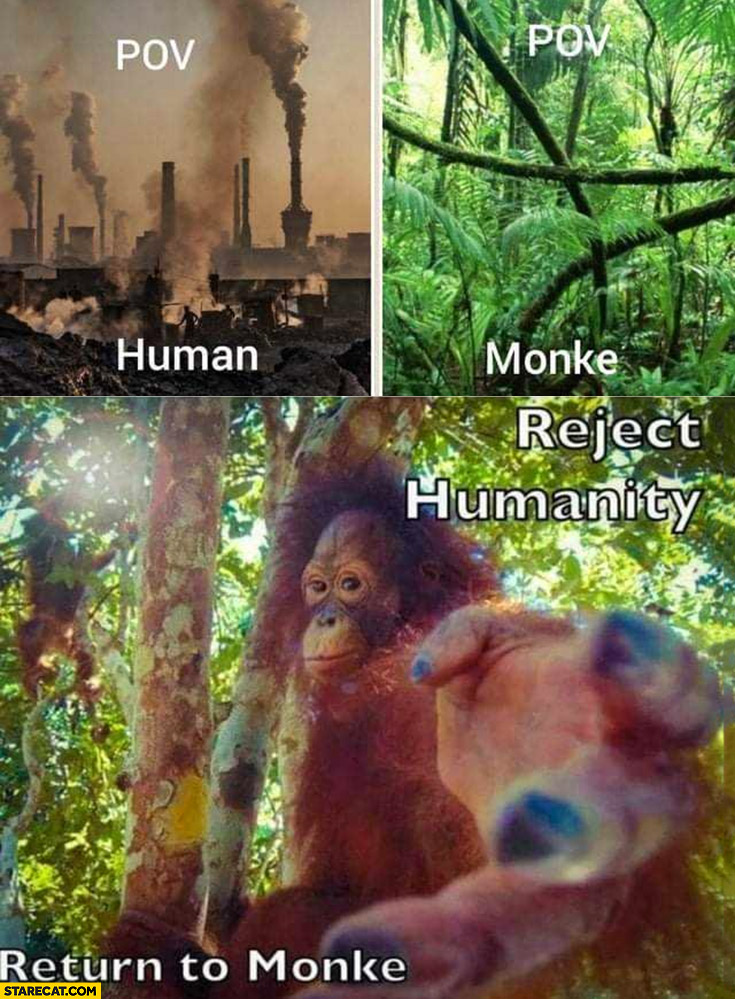 POV human vs monkey reject humanity return to monke
