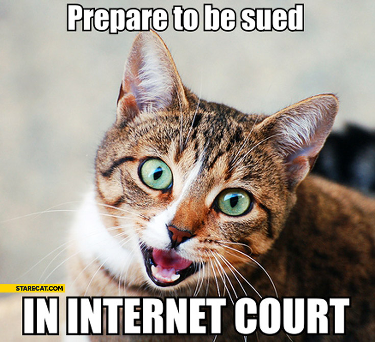 Prepare to be sued in internet court cat