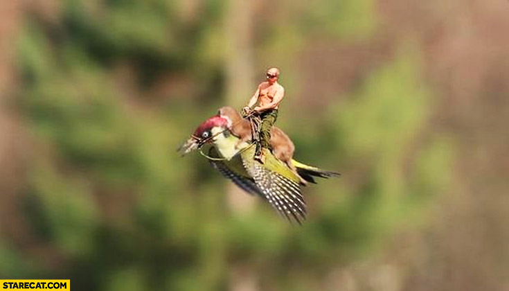 Putin flying on a bird with a monkey
