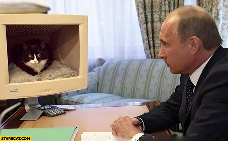 Putin staring at a cat inside a computer screen monitor