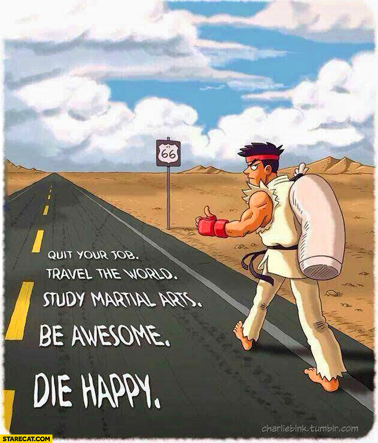 Quit your job travel the world study martial arts be awesome be happy Ryu