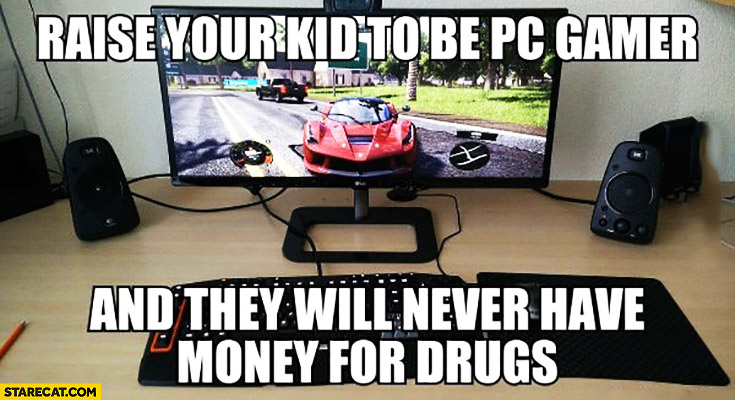 Raise your kid to be PC gamer and they will never have money for drugs