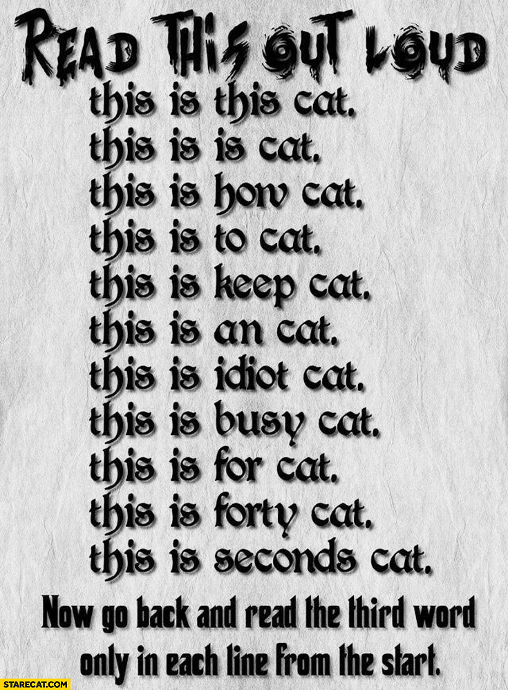 Read this out loud. This is this cat this is how to keep an idiot busy for forty seconds
