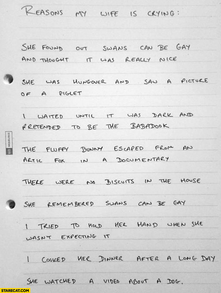 Reasons my wife is crying handwritten list
