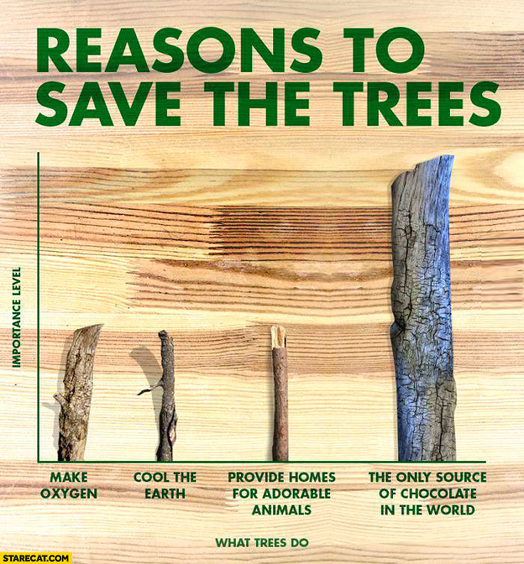 Reasons to save the trees only source of chocolate in the world
