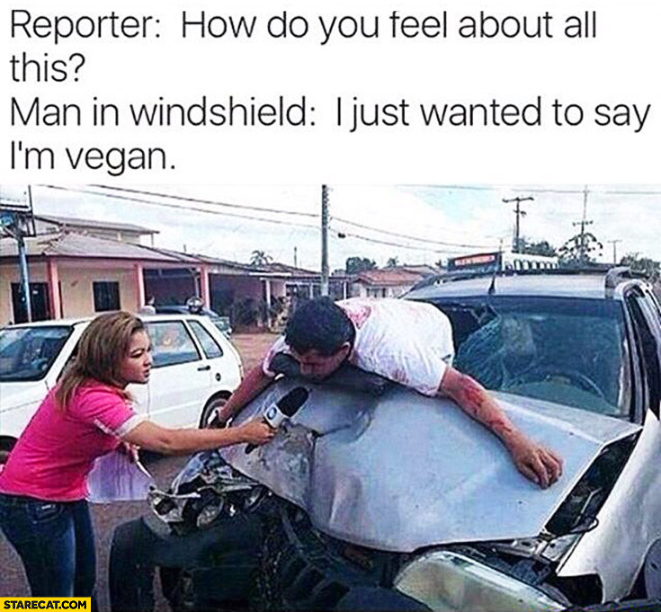 Reporter how do you feel about all this man in windshield I just wanted to say I'm vegan