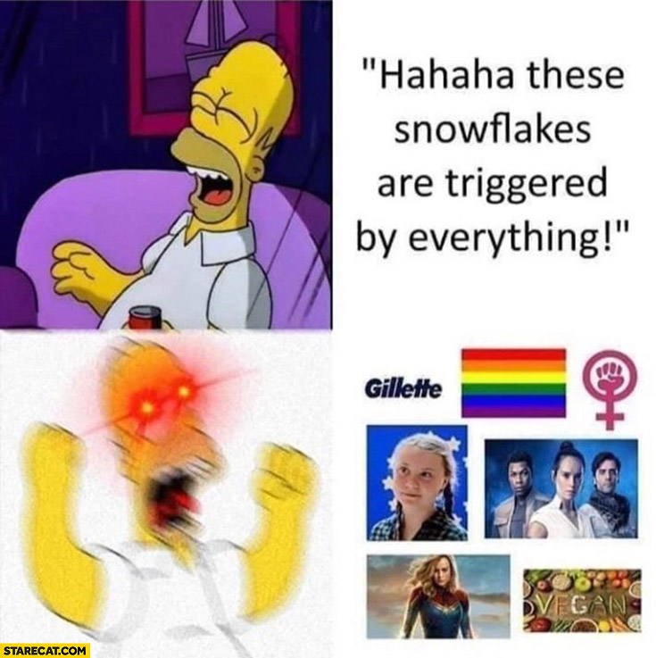 Right-winger haha these snowflakes are triggered by everything, gets trigerred by rainbow, vegan, Greta Thunberg Homer Simpson