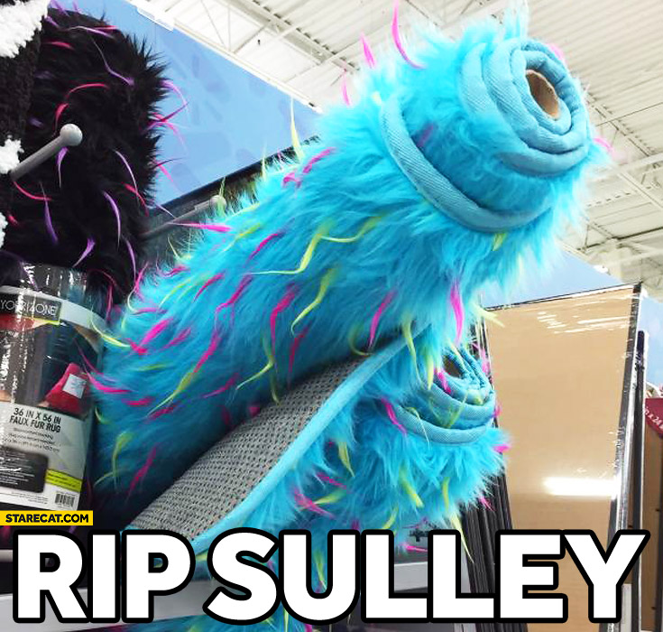 RIP Sulley Monster University blue carpet