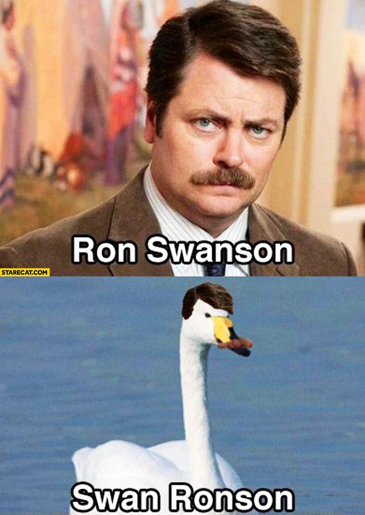 Ron Swanson Swan Ronson