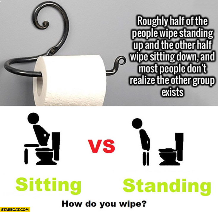 Rougly half of the people wipe standing and the other half wipe sitting down and most people don't realize other group exists. How do you wipe? toilet paper