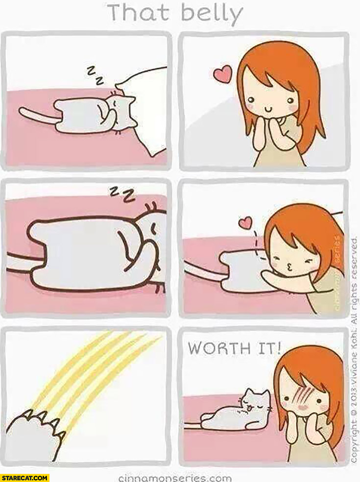 Rubbing cat belly is risky comic it was worth it scarred face