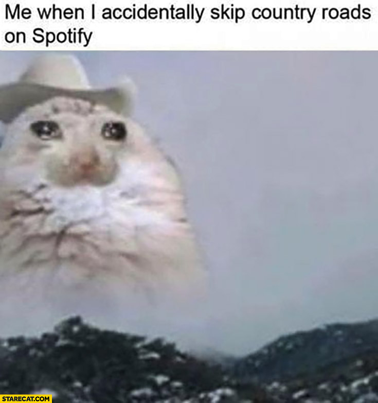 Sad cowboy cat me when I accidentally skip country roads on spotify crying