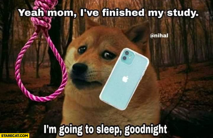 Sad doge yeah mom I've finished my study I'm going to sleep goodnight rope suicide