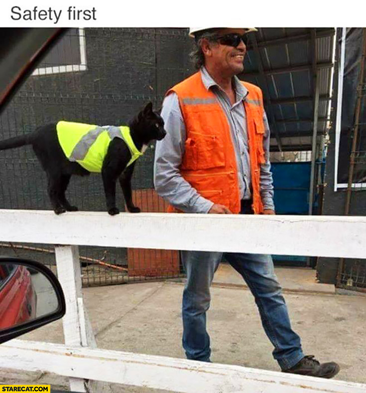 Safety first cat wearing safety visiiblity vest on a construction site