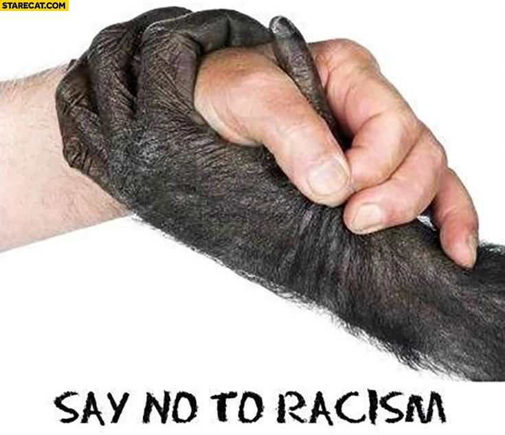 Say no to racism. Human gorrila monkey hand