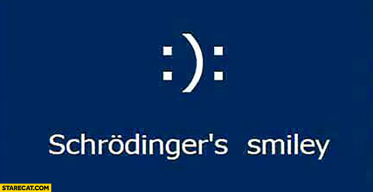 Schrodingers smiley both happy and sad at the same time