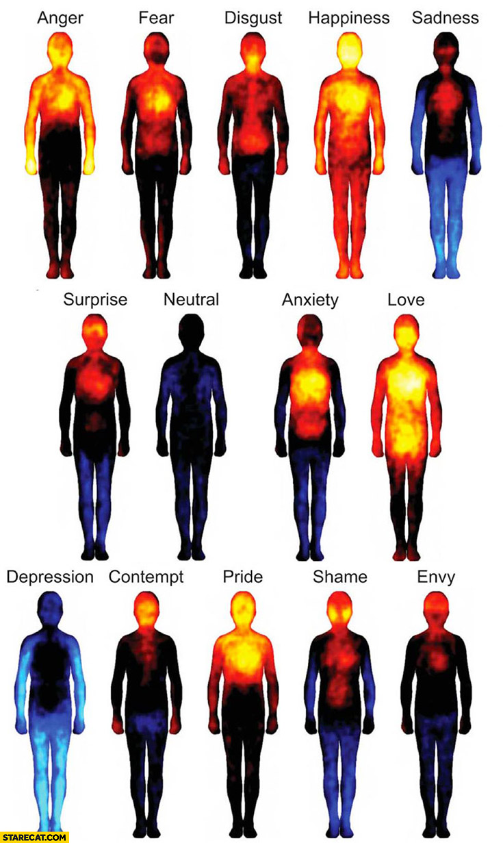Sensations in different parts of our body when we experience emotions infographic
