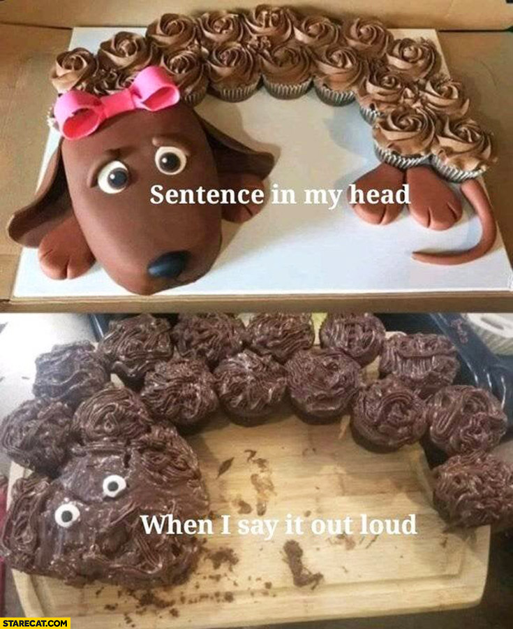Sentence in my head vs when i say it out loud cake fail