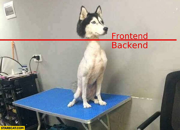 Shaved husky dog frontend backend explained comparison
