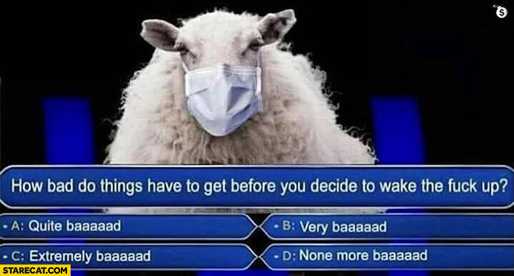 Sheep wearing a mask, how bad do things have to get before you decide to wake up?