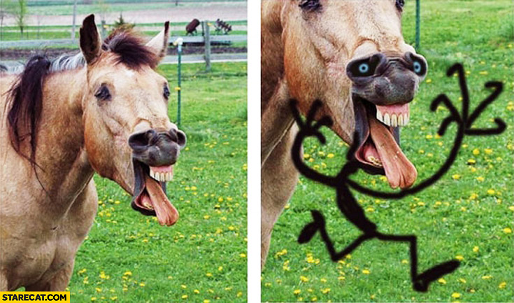 Silly horse face creative drawing on it