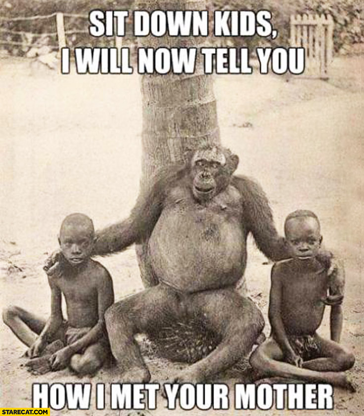 Sit down kids I will now tell you how I met your mother monkey gorilla chimpanzee