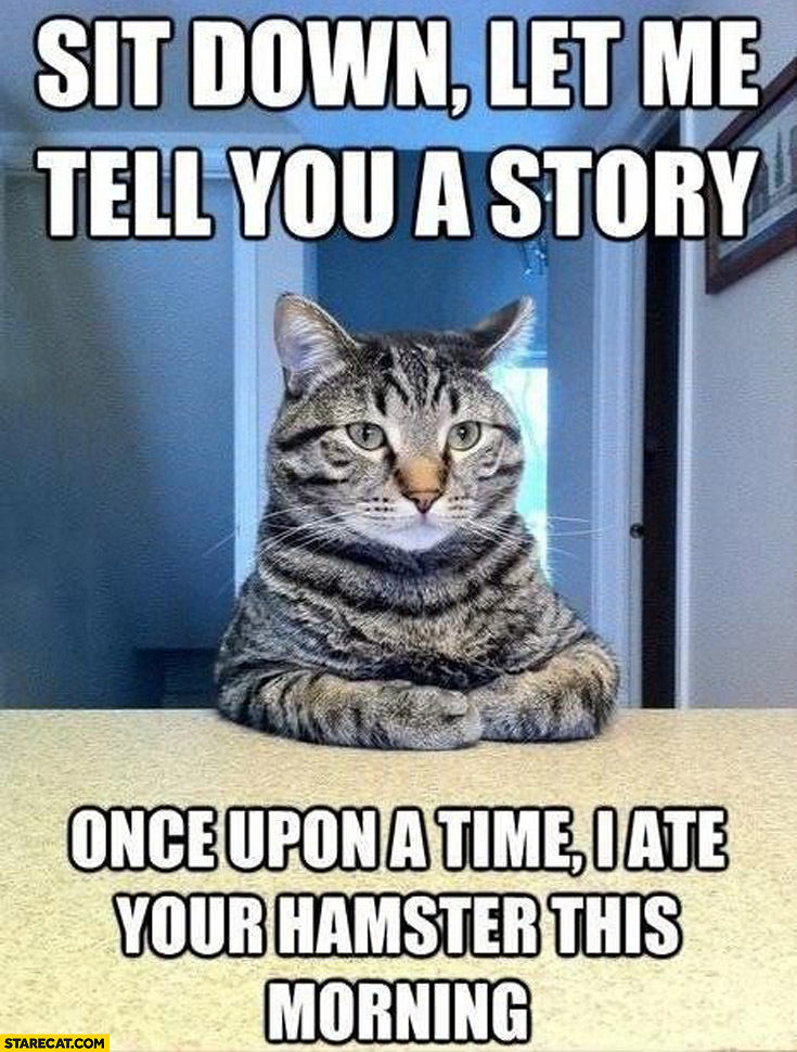 Sit down let me tell you a story once upon a time I ate your hamster this morning cat