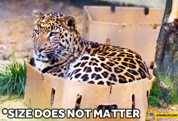 Size does not matter cat box