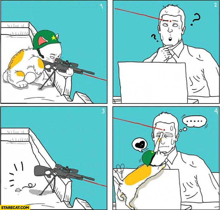 Sniper cat red dot laser pointer fail comic