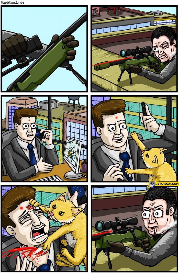 Sniper laser red dot cat