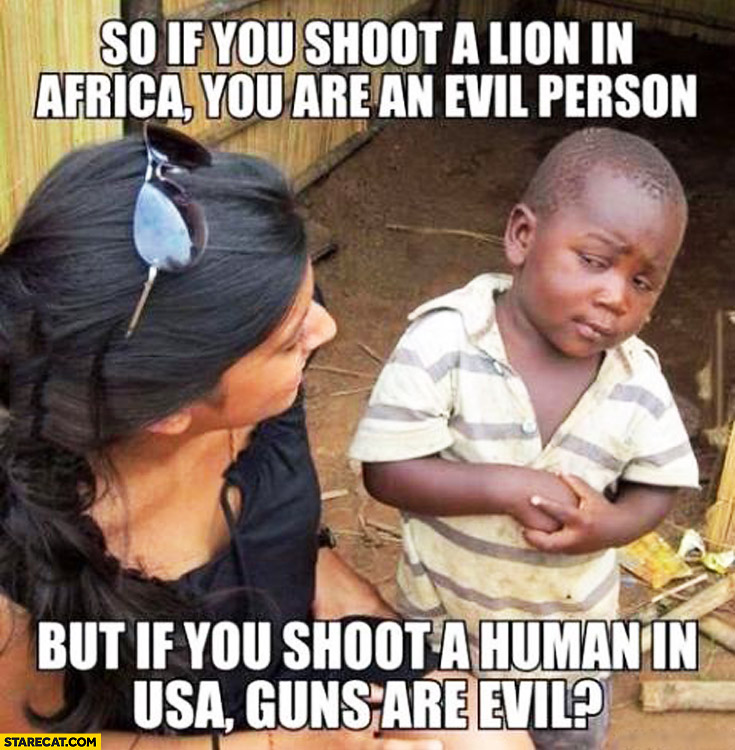 So if you shoot a lion in Africa you are an evil person but if you shoot a human in USA guns are evil
