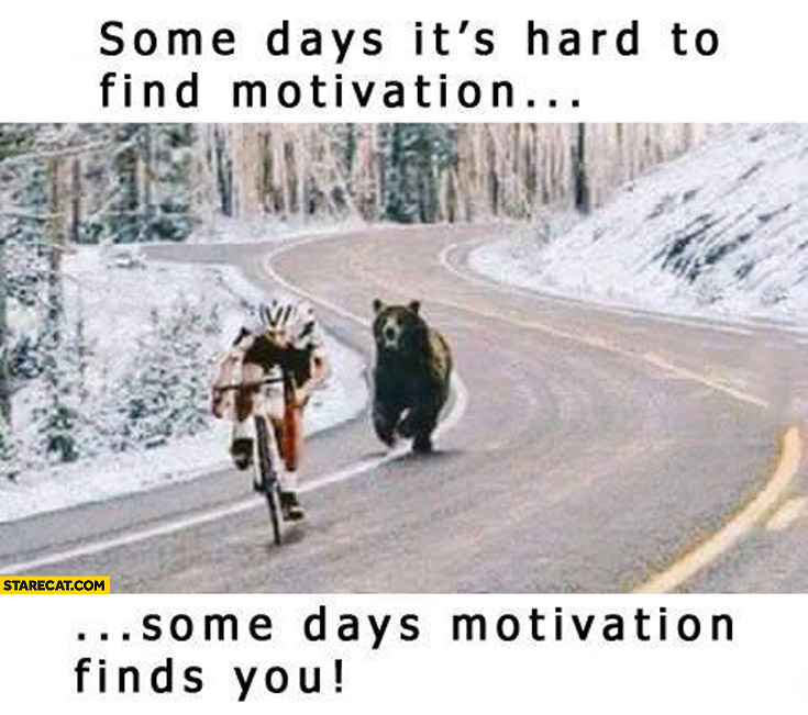 Some days it's hard to find motivation some days motivation finds you