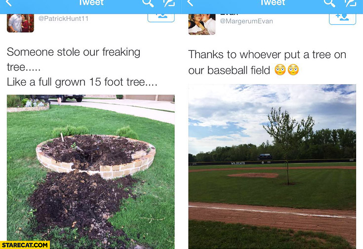 Someone stole our freaking tree. Thanks to whoever put a tree on our baseball field