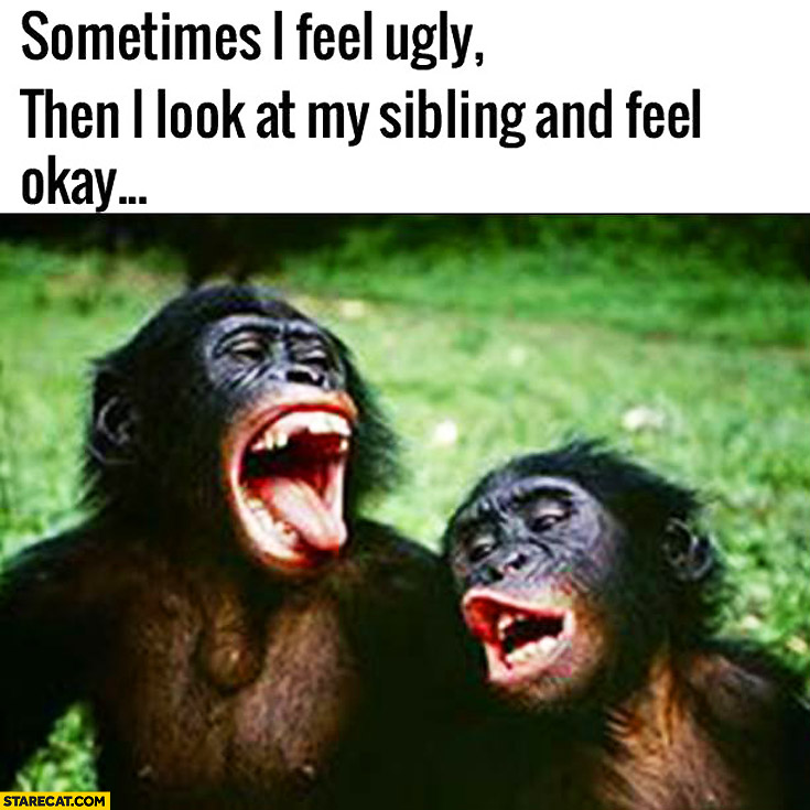 Sometimes I feel ugly then I look at my sibling and feel okay monkeys apes