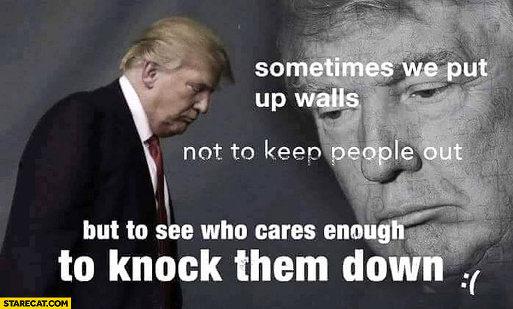 Sometimes we put up walls not to keep people out but to see who cares enough to knock them down Donald Trump