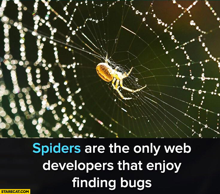 Spiders are the only web developers that enjoy finding bugs