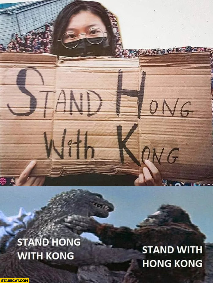 Stand Hong with Kong protester sign Godzilla fighting with stand with Hong Kong