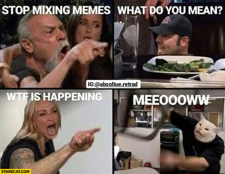Stop mixing memes, what do you mean, wtf is happening meow girl yelling at a cat mixed with old guy yelling