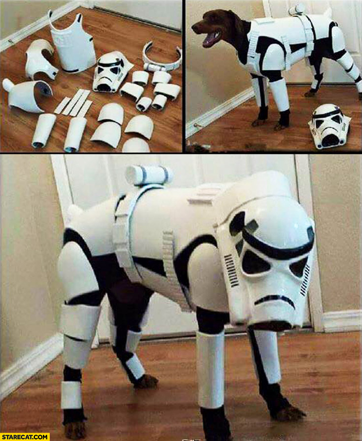 Stormtrooper outfit for a dog cosplay Star Wars
