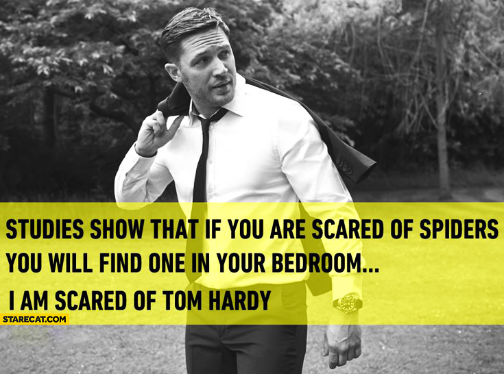 Studies show that if you are scared of spiders you will find one in your bedroom. I am scared of Tom Hardy