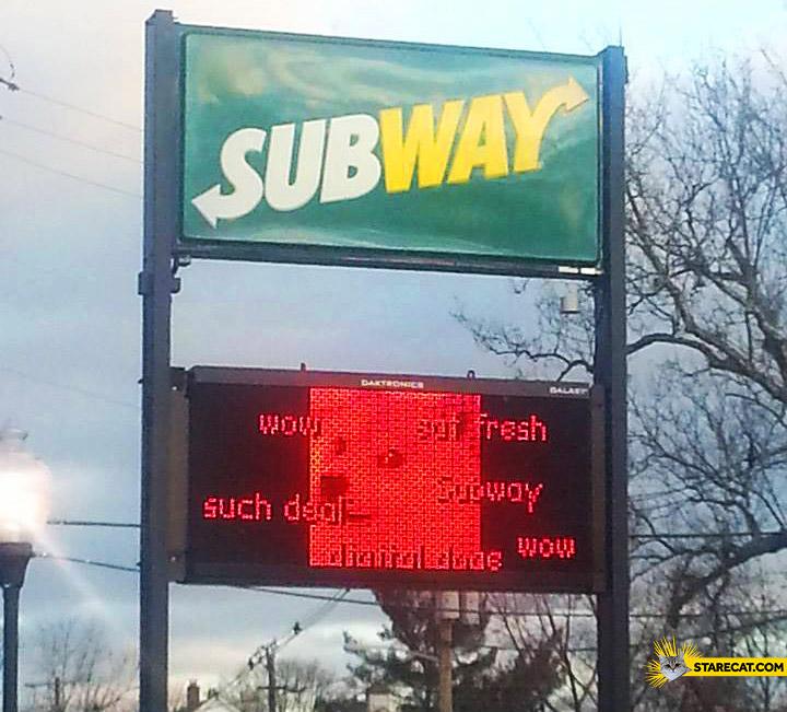 Subway doge