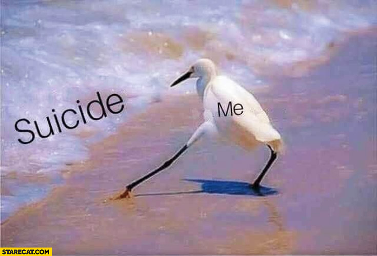 Suicide me bird only tries it with one leg