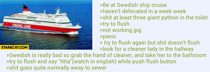Swedish story defecating on a ship hold hand of cleaner lady while flushing toilet