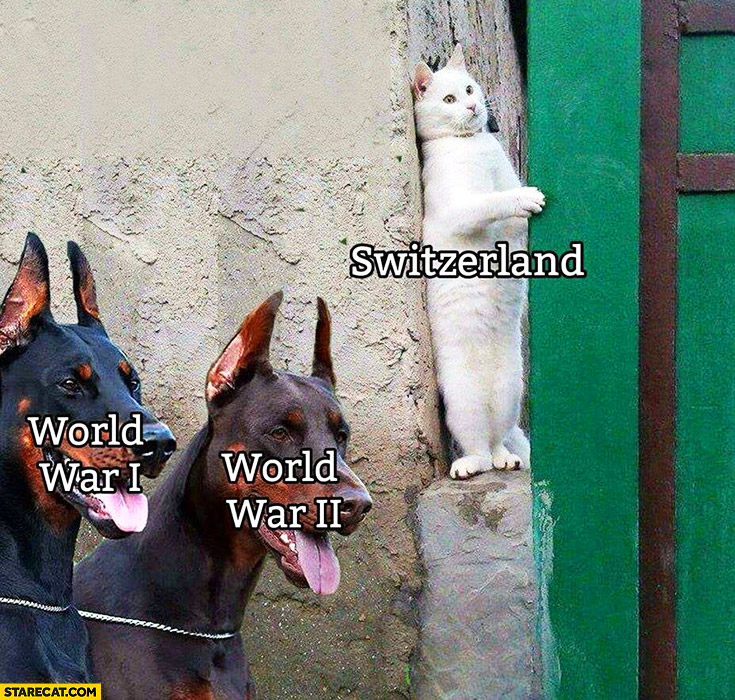 Switzerland hiding from World Wars cat hiding from dogs