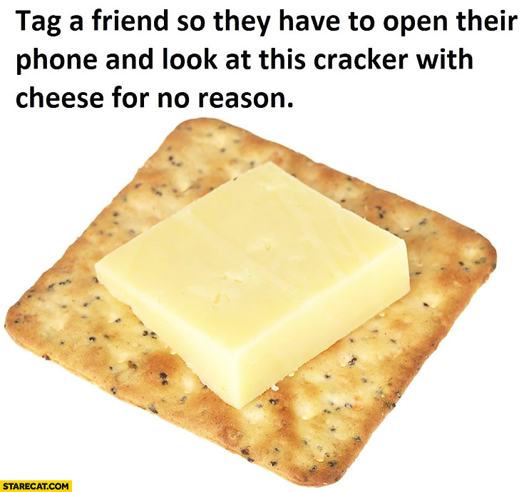 Tag a friend so they have to open their phone and look at this cracker with cheese for no reason